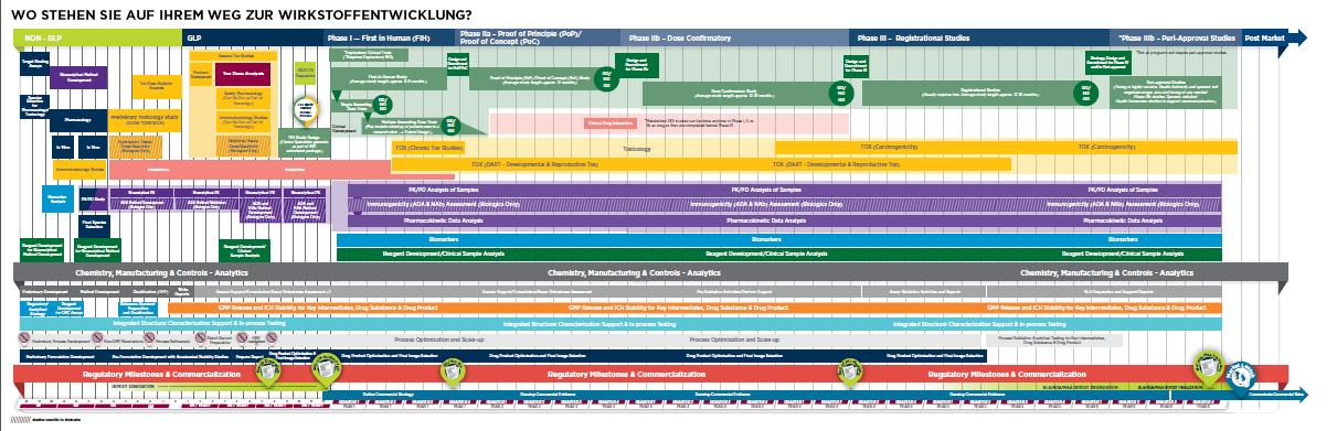 Zeitplan der Wirkstoffentwicklung